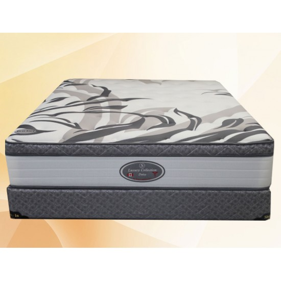 Matelas Queen Daisy (Plush Foam Encased)